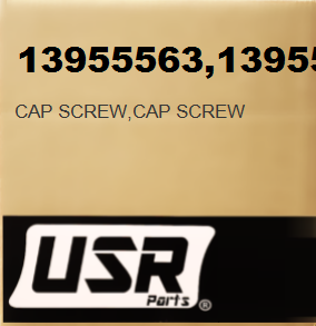 13955563 CAP SCREW FOR VOLVO